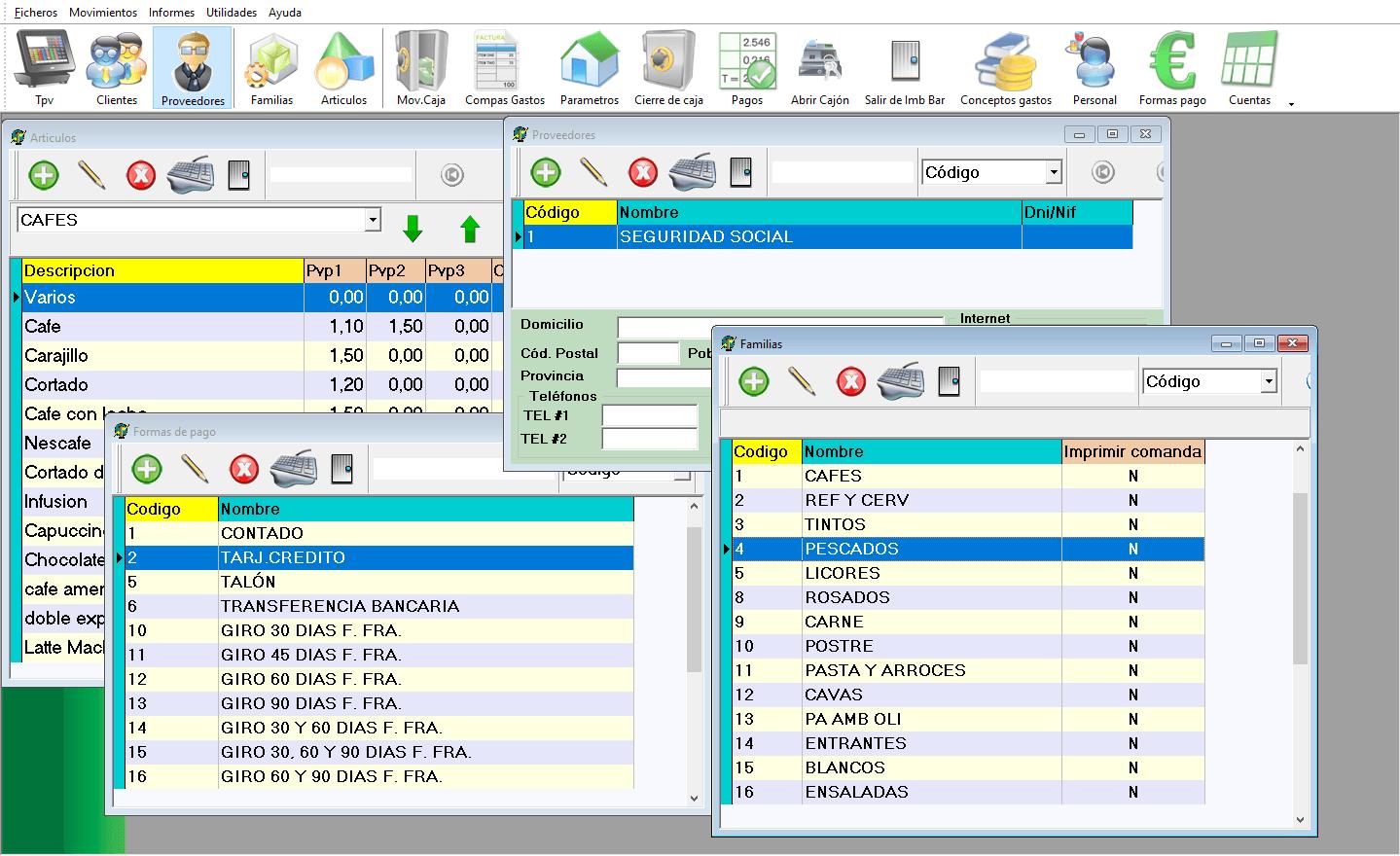 Registro de productos, proveedores, definición de familias, medios de pago